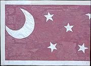 17th Arkansas Regiment Battle Flag.jpg