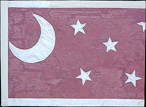17th Arkansas Infantry Regiment (Griffith's) - Van Dorn Pattern Flag of the 17th Arkansas