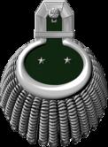 1893mmed-e16.png