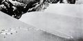 1937 yeti footprints.png