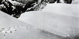Yeti - 1937 Frank S. Smythe photograph of alleged Yeti footprints, printed in Popular Science, 1952
