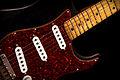 1979 Fender Stratocaster (2010-11-08 11.23.54 by John Tuggle).jpg