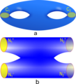 2-Hole Torus-cut.png