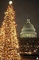 2000 U.S. Capitol Christmas Tree (31657782772).jpg
