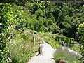 2008 07 Botanical Garden Meran 71040R0294.jpg