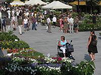 20090628 Bloemenmarkt Kouter (0011).jpg