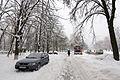 2012-12-25 Volhohradska Street, Kiev - 02.jpg