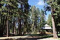 2013, Picnic Area, Botts Park, Foresthill, CA - panoramio.jpg
