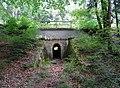 20140618180DR Tharandter Wald Tunnel unter Eisenbahn.jpg