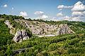 20140626-Naturschutzgebiet Burgberg.jpg