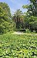 2014 Suchum, Ogród botaniczny (38).jpg