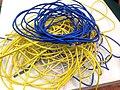 2015-365-77 Got Network? (16654853957).jpg