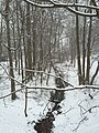 2016-02-15 09 41 29 View south down a snowy tributary of the Flatlick Branch of Cub Run from Springhaven Drive in the Franklin Glen section of Chantilly, Fairfax County, Virginia.jpg