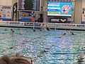 2016 Water Polo Olympic Qialification tournament NED-FRA 25.jpeg