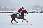30th St. Moritz Polo World Cup on Snow - 20140202 - Cartier vs Ralph Lauren 20.jpg
