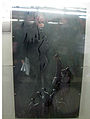 Accessibilitat al Transport (Manuel Cusachs)
