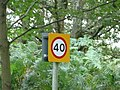 40 mph speed limit reminder sign in Liphook, Hampshire, England.jpg