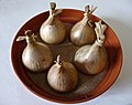 5 onions (5388042946).jpg