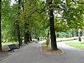 616135 pow krakowski gm Skawina Skawina park miejski 05.JPG