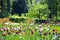 80-382-5025 Kyiv Navodnycky park DSC 8369.jpg