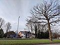 A34 Birmingham tree - 2021-02-12 - Andy Mabbett - 02.jpg