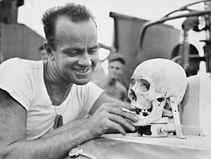Human trophy collecting - American sailor with the skull of a Japanese soldier during World War II .