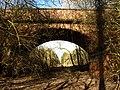 A Cracking Railway Bridge - geograph.org.uk - 1730666.jpg