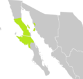 A Fouquieria columnaris elterjedési térképe.png