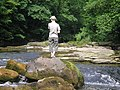 A lone individual stood on a rock surveying Hack Falls - geograph.org.uk - 226003.jpg