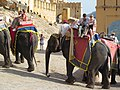 A narrow path paved with stone to the circuitous climb which approaches the main gate of the palace.the visitor enjoyed elephant -ride on this ascent - panoramio.jpg