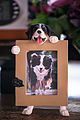 A photo frame of bernese mountain dog (11018600043).jpg