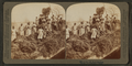 A rice raft, South Carolina, from Robert N. Dennis collection of stereoscopic views 2.png
