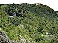 Aberdovey - panoramio (28).jpg