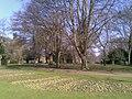 Abington Park - geograph.org.uk - 2300099.jpg