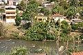 Acaiaca, Brazil (1323959270).jpg