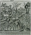 Achaia - Schedell Hartmann - 1493.jpg