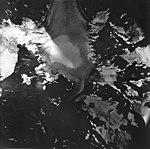Adams Glacier, valley glacier source and hanging glaciers on the mountain sides, August 22, 1979 (GLACIERS 5844).jpg