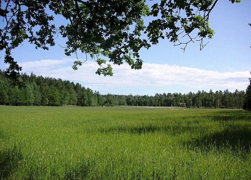 Datei:Adelson landskap 2007.JPG
