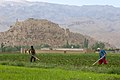 Afghan farmers in Bamyan.jpg