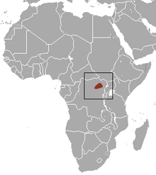 African Dusky Shrew area.png
