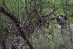 Aircrew members traverse SERE combat survival training challenges 141009-F-AD344-244.jpg