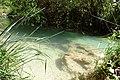 Akchour clear waters.JPG