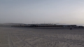 Al Wakrah beach camps and palm trees.png