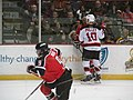 Albany Devils vs. Portland Pirates - December 28, 2013 (11622079435).jpg