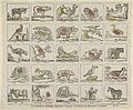 Alfabet met dieren.jpeg