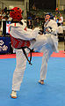 All-Army TKD compete at US nationals 150708-Z-ZS194-001.jpg