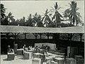 Am Tendaguru - Leben und Wirken einer deutschen Forschungsexpedition zur Ausgrabung vorweltlicher Riesensaurier in Deutsch-Ostafrika (1912) (17977421988).jpg