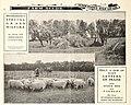 American farmers' manual (1902) (18119864765).jpg