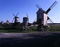 Angla windmills, Estonia.JPG