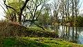 Angling on Ohře River - panoramio.jpg